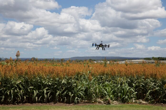 Agricoltura 4.0, ipertecnologia come parola d'ordine