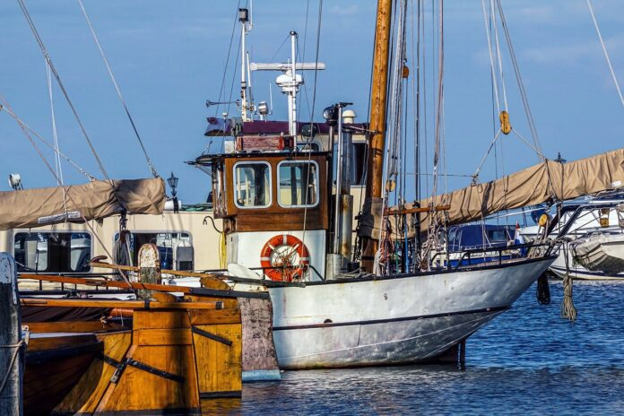 Adriatico: appello per la tutela