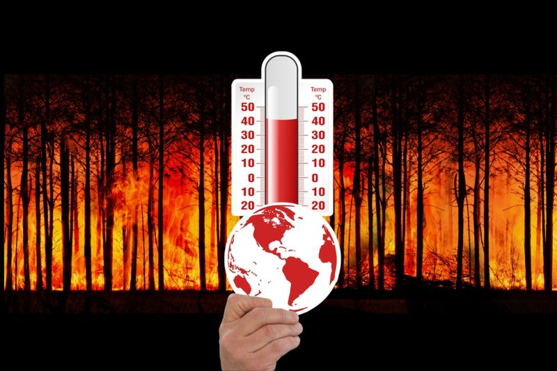 WWF per il clima: dobbiamo sbrigarci e puntare al 2040