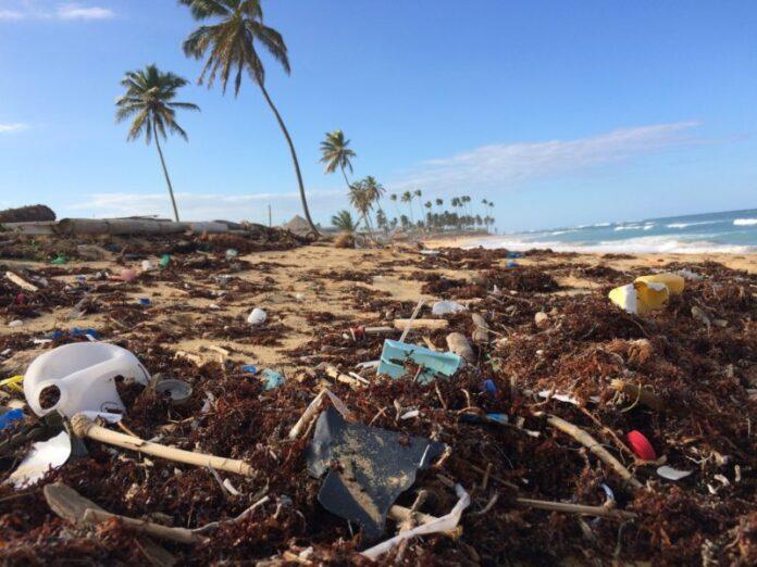 ACCORDO UE, WWF: l'Italia sia Leader nell'anticipo del decreto plastic free