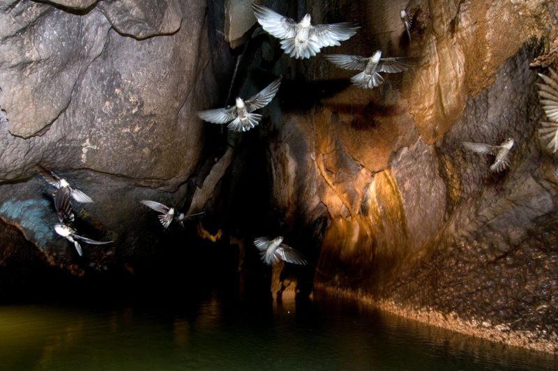 Il fiume sotterraneo di Puerto Princesa