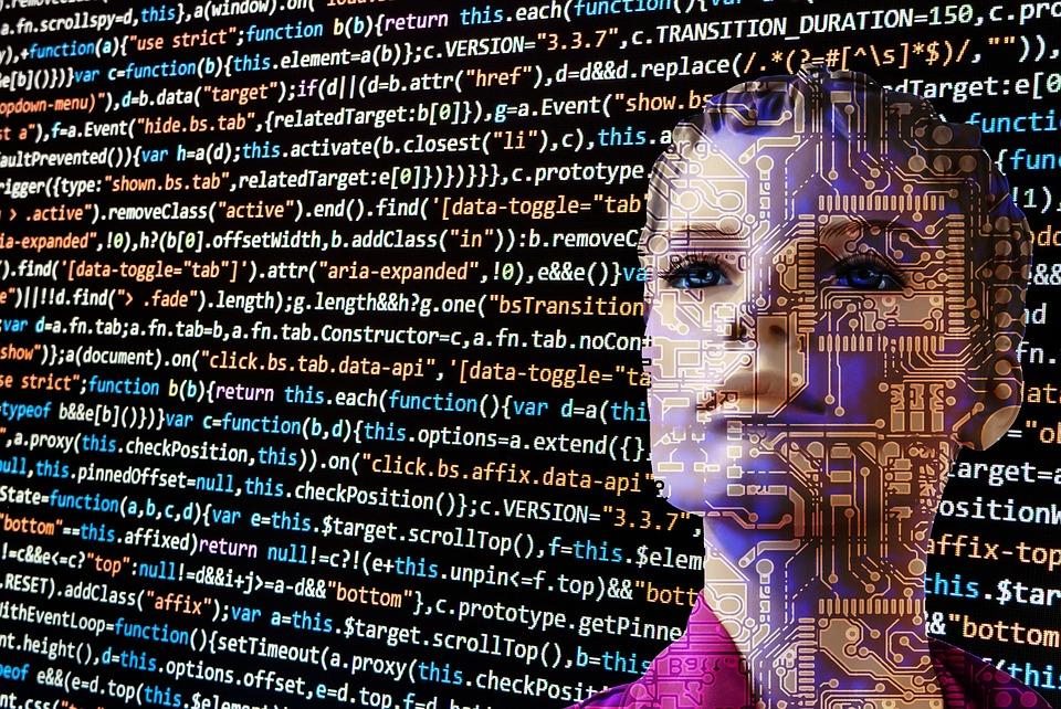 InTribe e il successo di un'impresa tecnologica al femminile (Image by geralt on Pixabay)