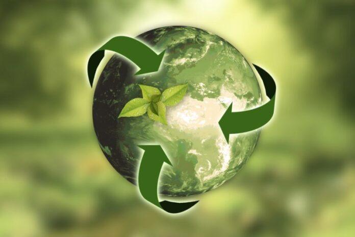 Premio per lo sviluppo sostenibile 2019 alle imprese e alle città più green