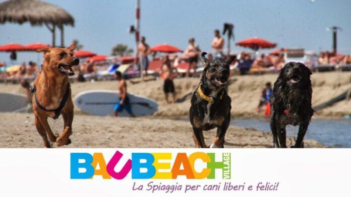 Happy Sea, Happy Earth! Al Baubeach di Maccarese