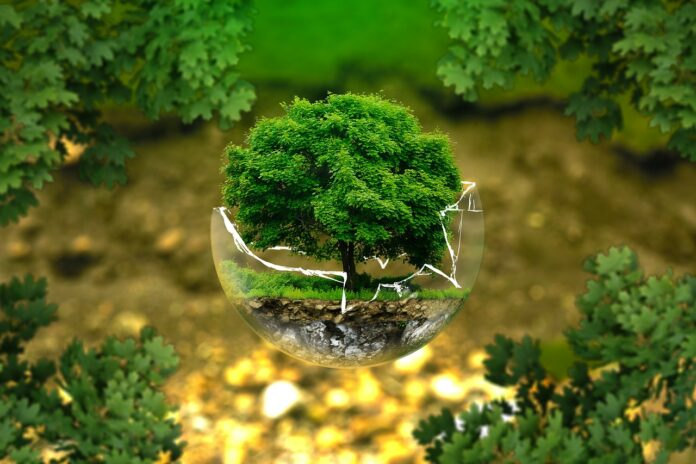 Cresco Award premia i comuni che investono sullo sviluppo sostenibile