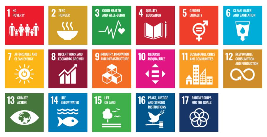 I 17 obiettivi di sviluppo sostenibile da raggiungere entro 2030