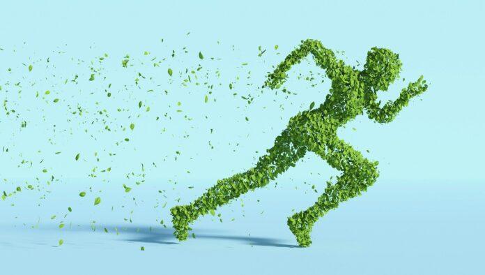 Green, la sostenibilità come paradigma occupazionale per il futuro