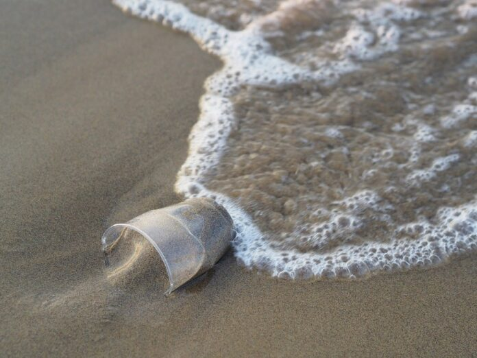 Inquinamento da plastica, una minaccia e un grande problema da risolvere