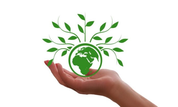 Green reporting, 6 raccomandazioni per il mondo delle imprese