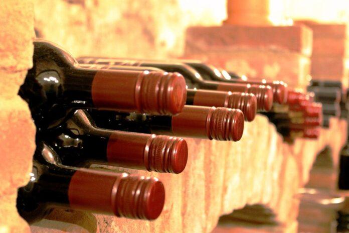 Alberi, non parole: il Vino Nobile di Montepulciano guarda al futuro