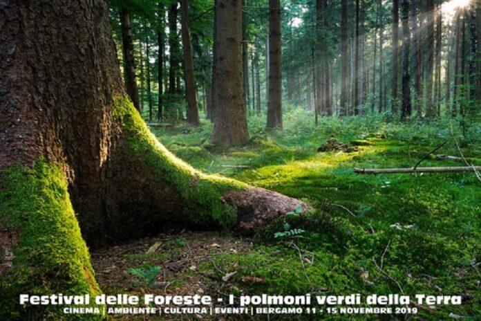 A Bergamo, il Festival delle Foreste, tra Cinema e Natura