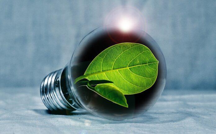 Elettricità green: le buone pratiche per ridurre i consumi domestici