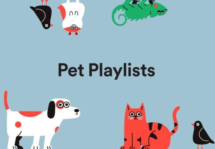 Da Spotify una pet-playslists pensata per cani e gatti