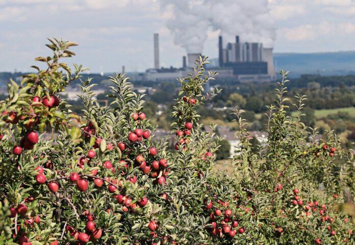 Covid-19 e inquinamento: riflettere serve a tutti noi