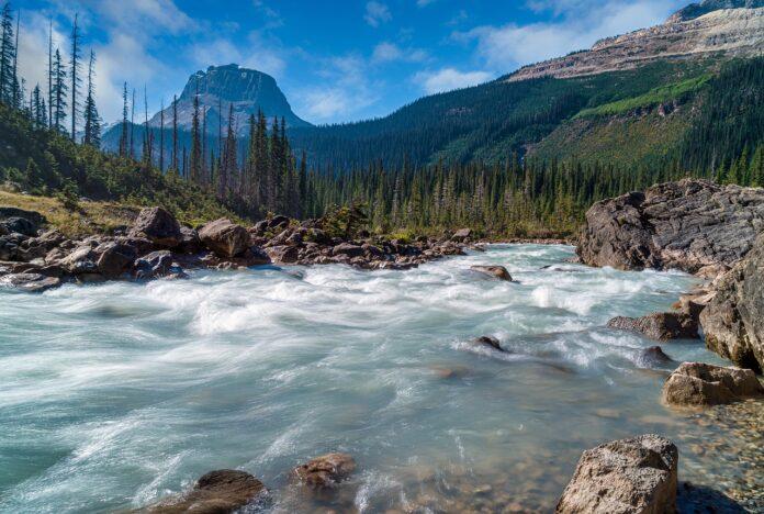 Tour Virtuali, i parchi nazionali del mondo da visitare con un click