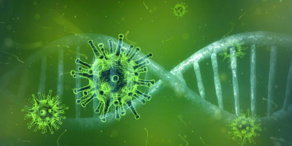 SARS-CoV-2, una variante ha aumentato la capacità del virus di infettare le cellule umane.