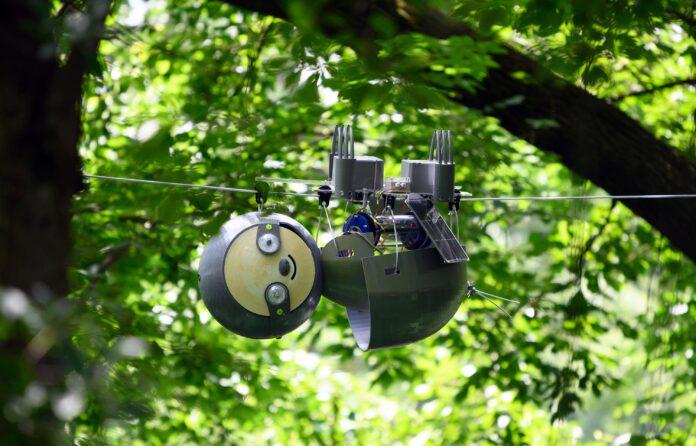 SlothBot, il bradipo robot che aiuterà a tutelare l'ambiente e le specie a rischio