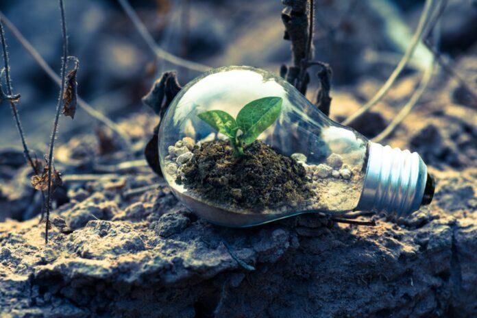 Transizione energetica sostenibile, elemento determinante per il futuro