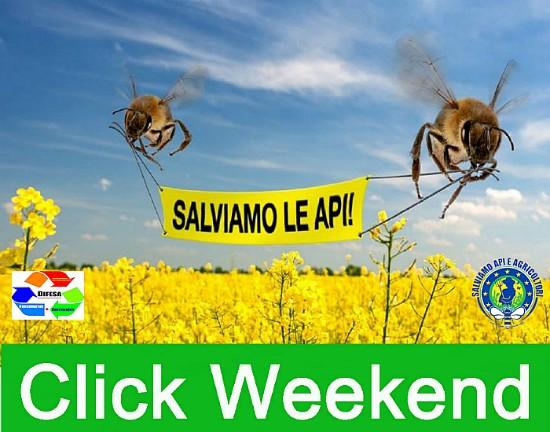 """""""Click Weekend"""", due giorni per salvare la biodiversità e le api"""