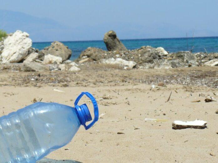 Plastica: si studia un'alternativa ecologica ideale per l'usa e getta