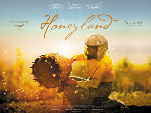 Honeyland: il film dedicato alle api e al delicato equilibrio tra uomo e natura