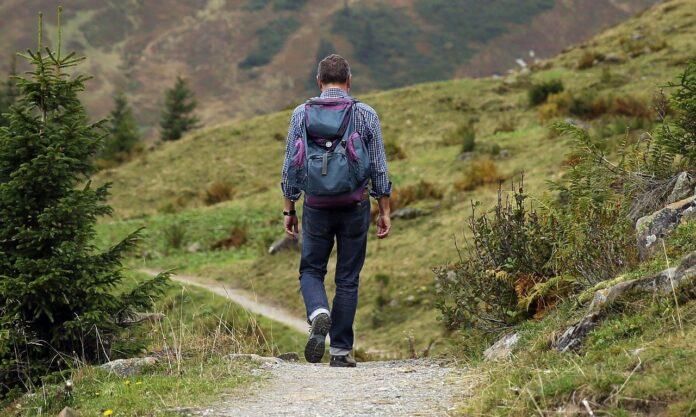 """Il """"Sentiero dei Parchi"""", un cammino tra il verde dei parchi nazionali italiani"""