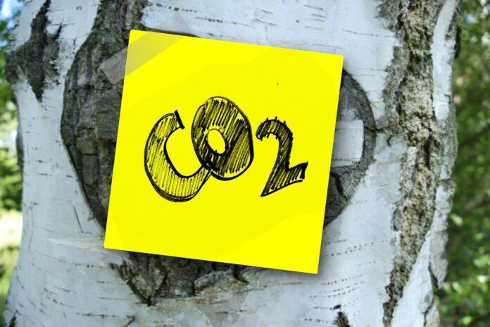 Pandemia climatica, nuova agenda green