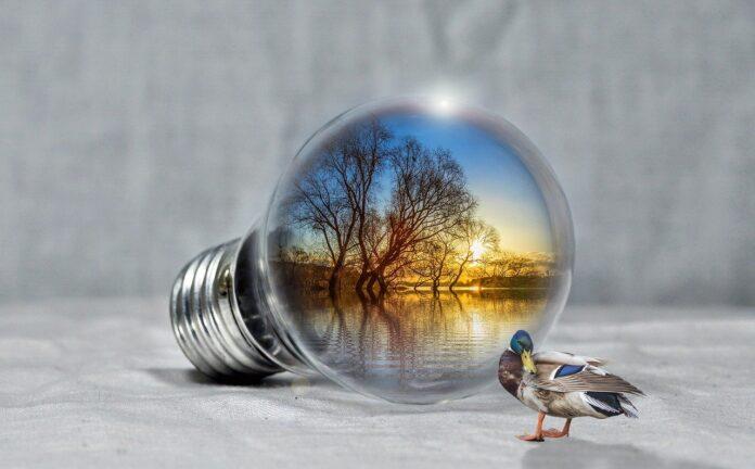Fonti energetiche rinnovabili: il futuro del nostro pianeta