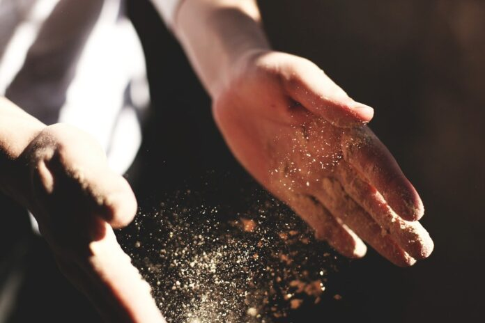 Gli acari della polvere, i cinque rimedi naturali per contrastarli