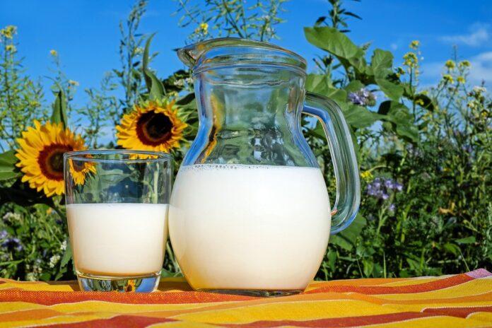 Latte fresco: le tipologie che si trovano in commercio e i consigli per l'acquisto