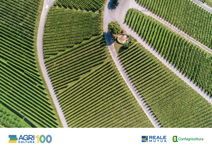 AGRIcoltura100, la sostenibilità delle imprese agricole per rilanciare il paese