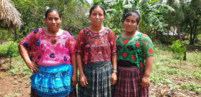 Festa della donna, alberi in Guatemala a sostegno delle comunità locali