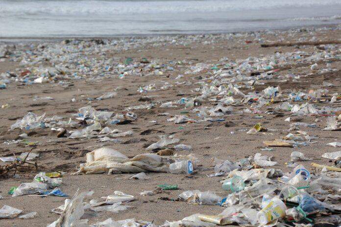 """Progetto """"Toscana Plastic Free"""", in arrivo nelle classi toscane"""