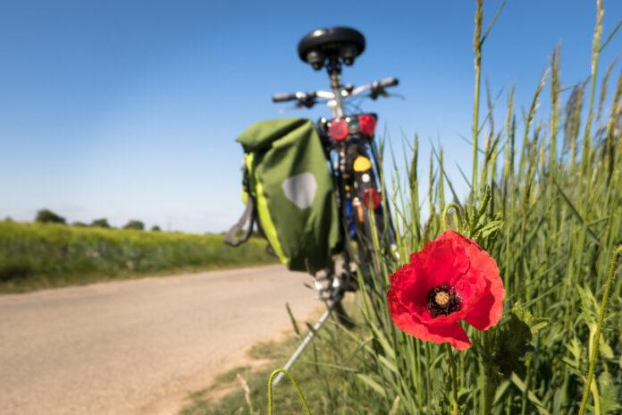 Xtribe, l'app per la vendita, lo scambio e il noleggio di biciclette e accessori
