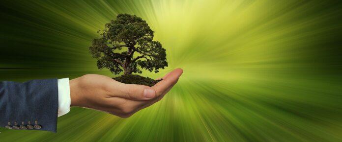 Ambiente e imprese, al via protocollo d'intesa Ami-Assoretipmi