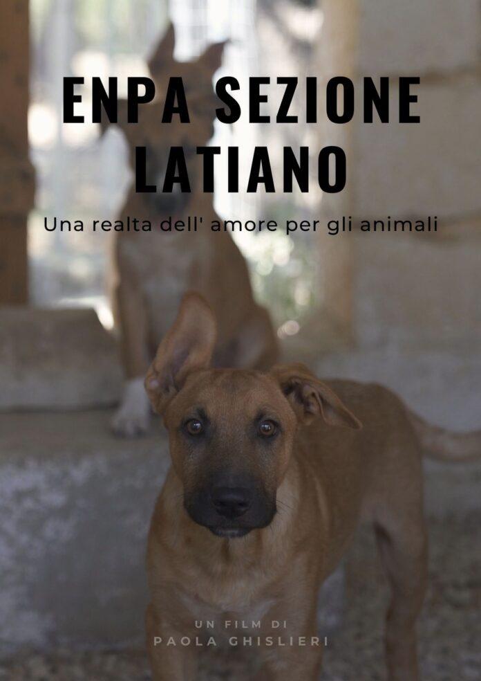 Paola Ghislieri, un docufilm su chi si occupa degli animali più in difficoltà