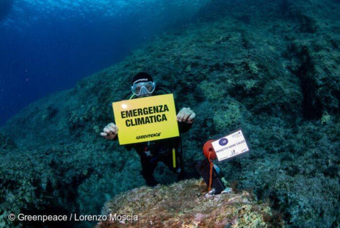Clima, Greenpeace con