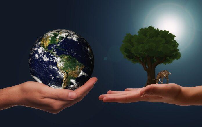 Ambientalisti su PNRR e clima: non va bene, c'è ancora molto da fare