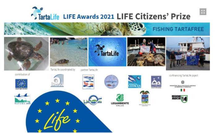 TartaLife, il progetto che salva le tartarughe marine vince il Life Award 2021
